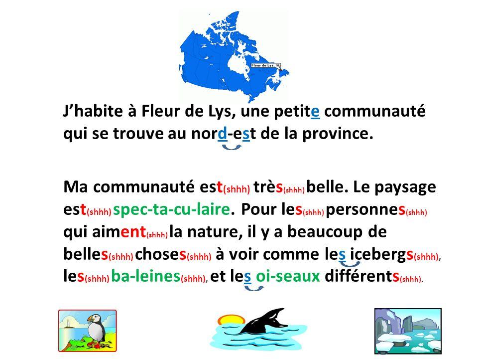 J'habite à Fleur de Lys, une petite communauté qui se trouve au nord-est de la province.