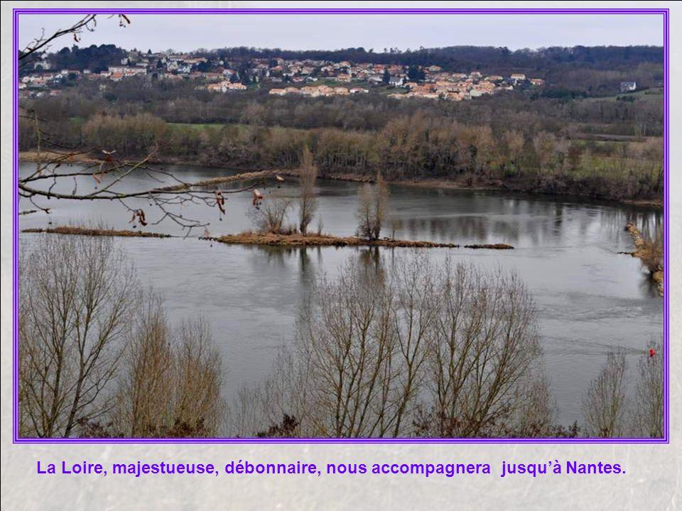La Loire, majestueuse, débonnaire, nous accompagnera jusqu'à Nantes.
