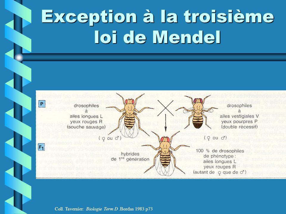 Exception à la troisième loi de Mendel