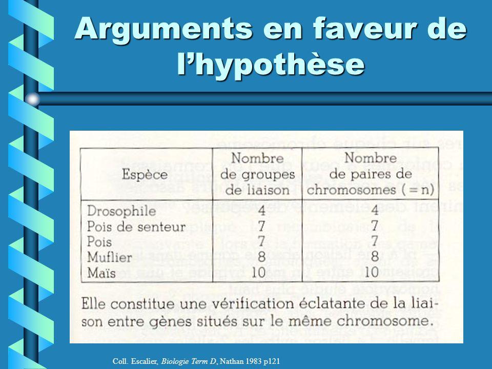 Arguments en faveur de l'hypothèse