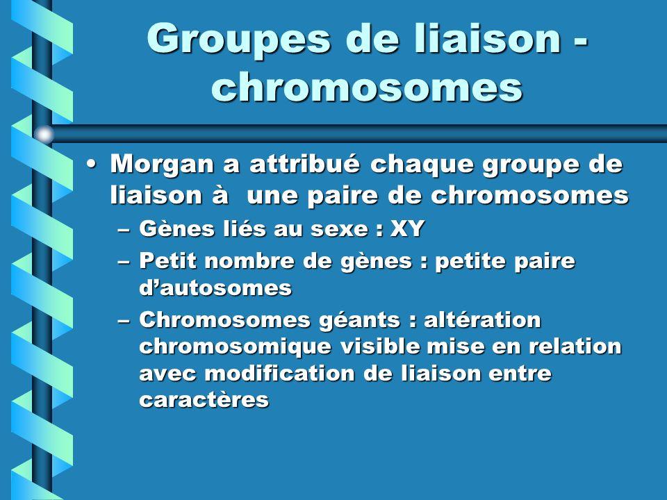 Groupes de liaison - chromosomes