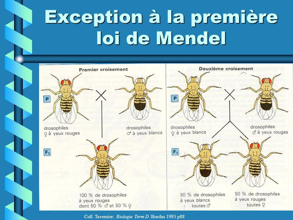 Exception à la première loi de Mendel