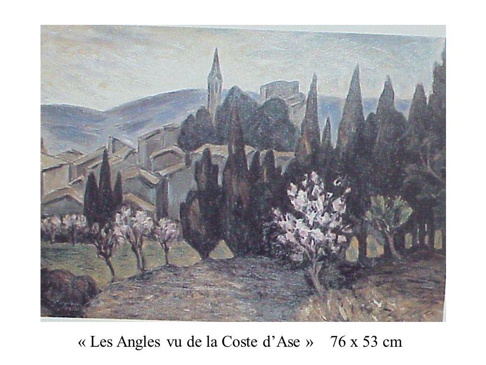 « Les Angles vu de la Coste d'Ase » 76 x 53 cm