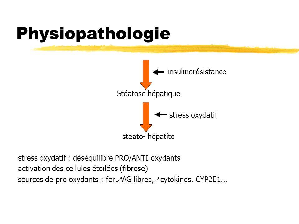 Physiopathologie insulinorésistance Stéatose hépatique stress oxydatif