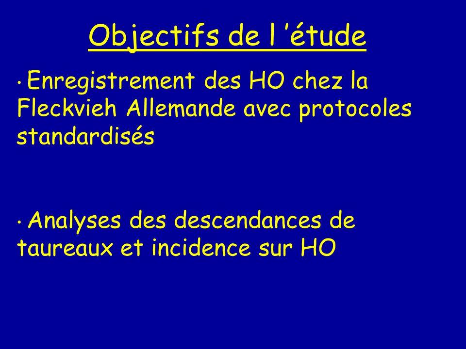 Objectifs de l 'étude Enregistrement des HO chez la Fleckvieh Allemande avec protocoles standardisés.