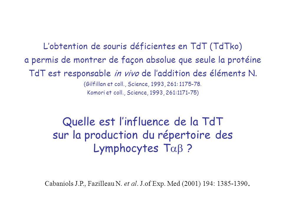 Quelle est l'influence de la TdT