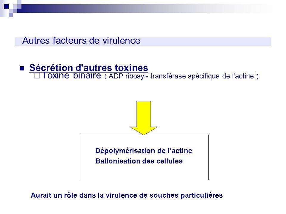 Autres facteurs de virulence