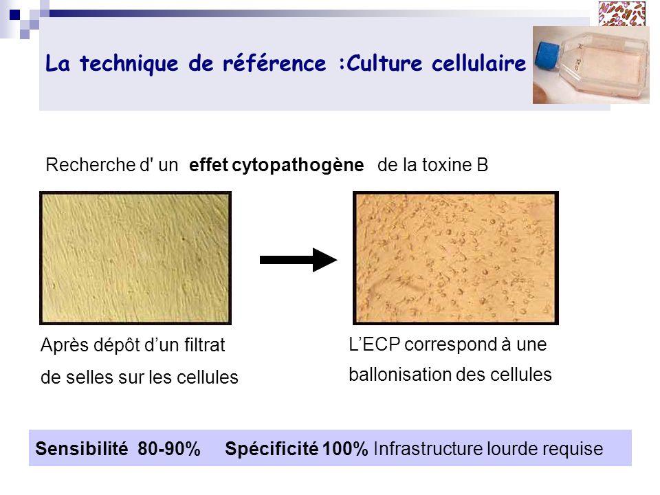 La technique de référence :Culture cellulaire