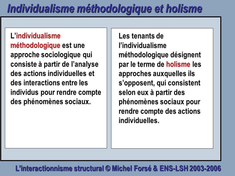 Individualisme méthodologique et holisme