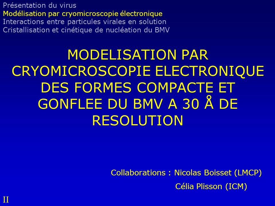 Présentation du virus Modélisation par cryomicroscopie électronique. Interactions entre particules virales en solution.