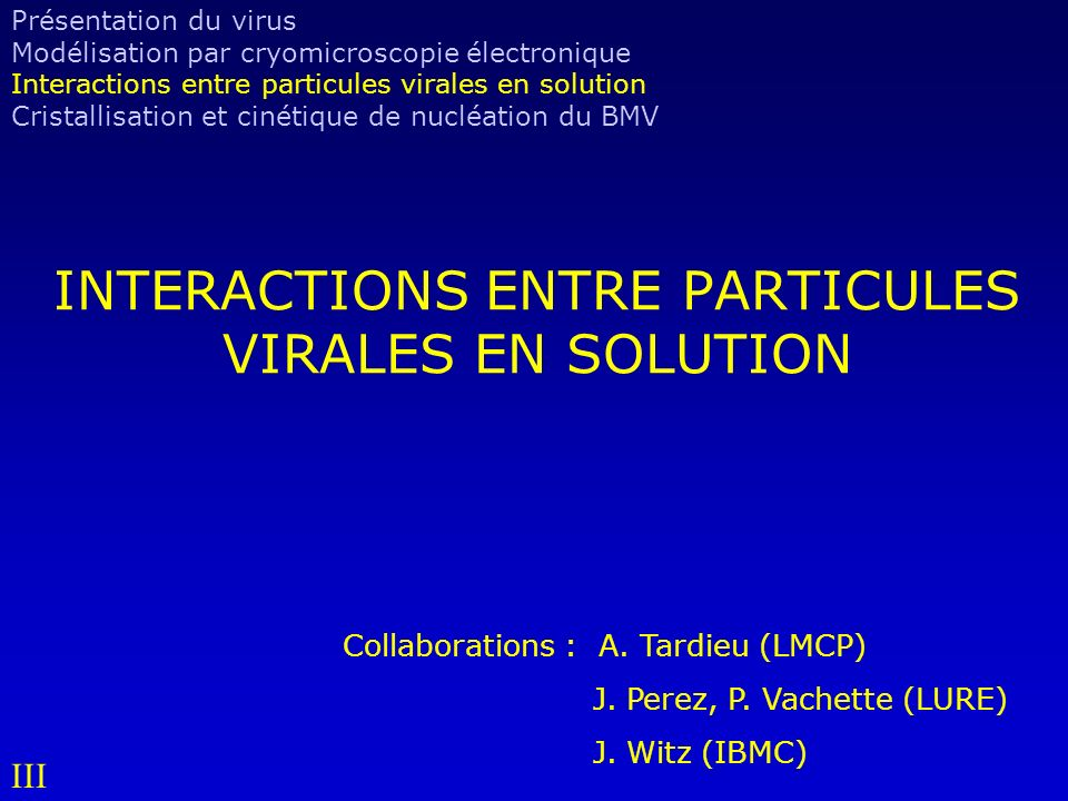 INTERACTIONS ENTRE PARTICULES VIRALES EN SOLUTION