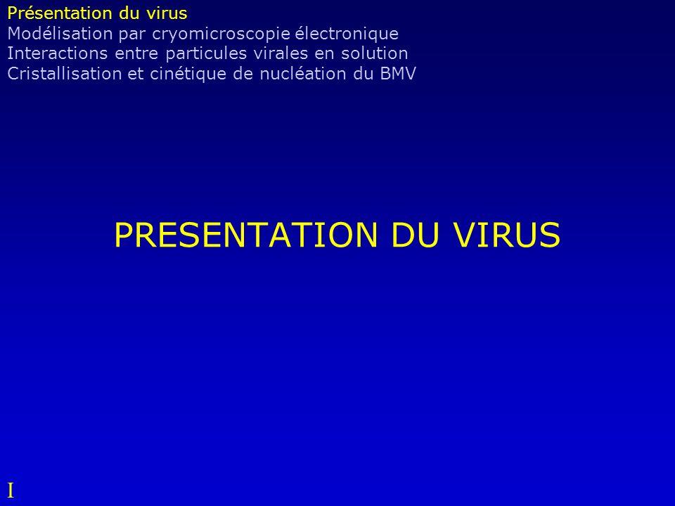 PRESENTATION DU VIRUS I Présentation du virus