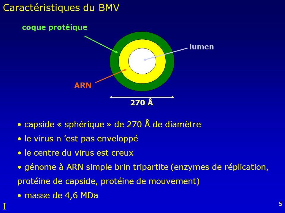 Caractéristiques du BMV