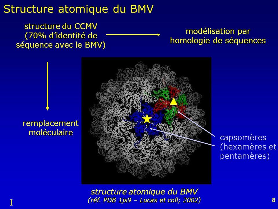 Structure atomique du BMV