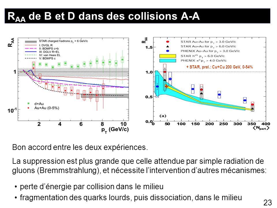 RAA de B et D dans des collisions A-A