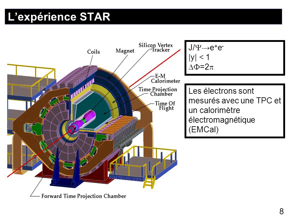 L'expérience STAR J/→e+e- |y| < 1 DF=2p