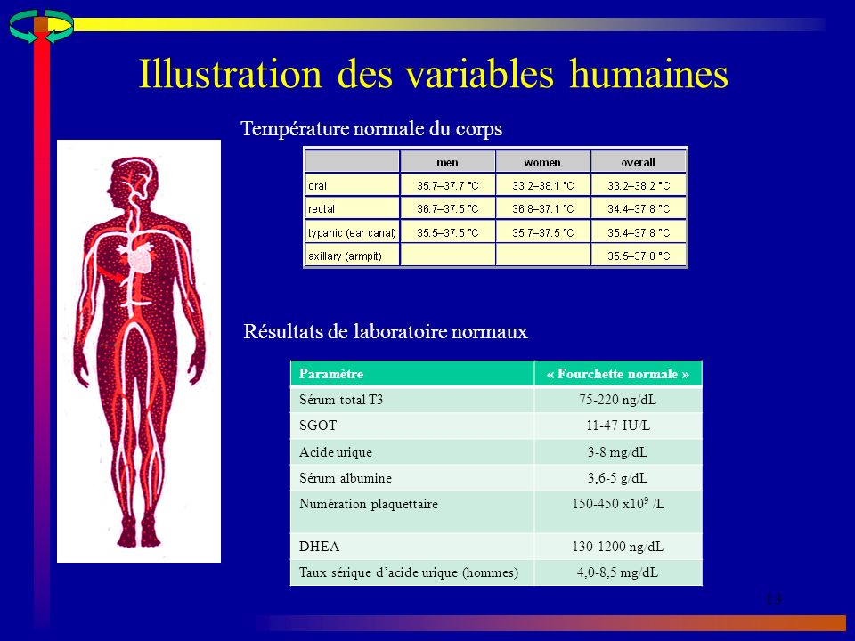 Illustration des variables humaines