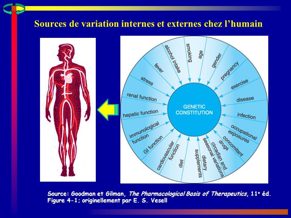 Sources de variation internes et externes chez l'humain