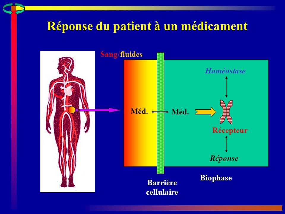 Réponse du patient à un médicament