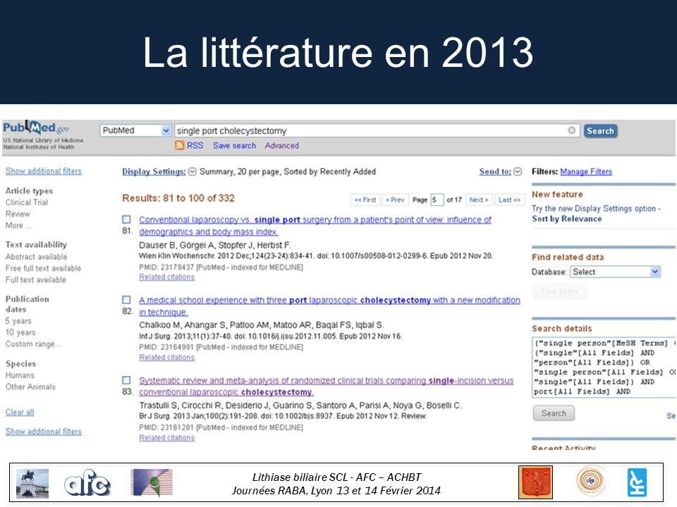 La littérature en 2013