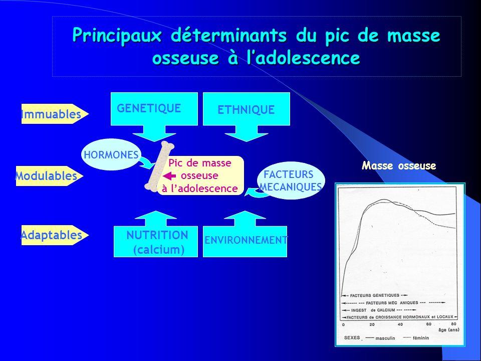 Principaux déterminants du pic de masse osseuse à l'adolescence
