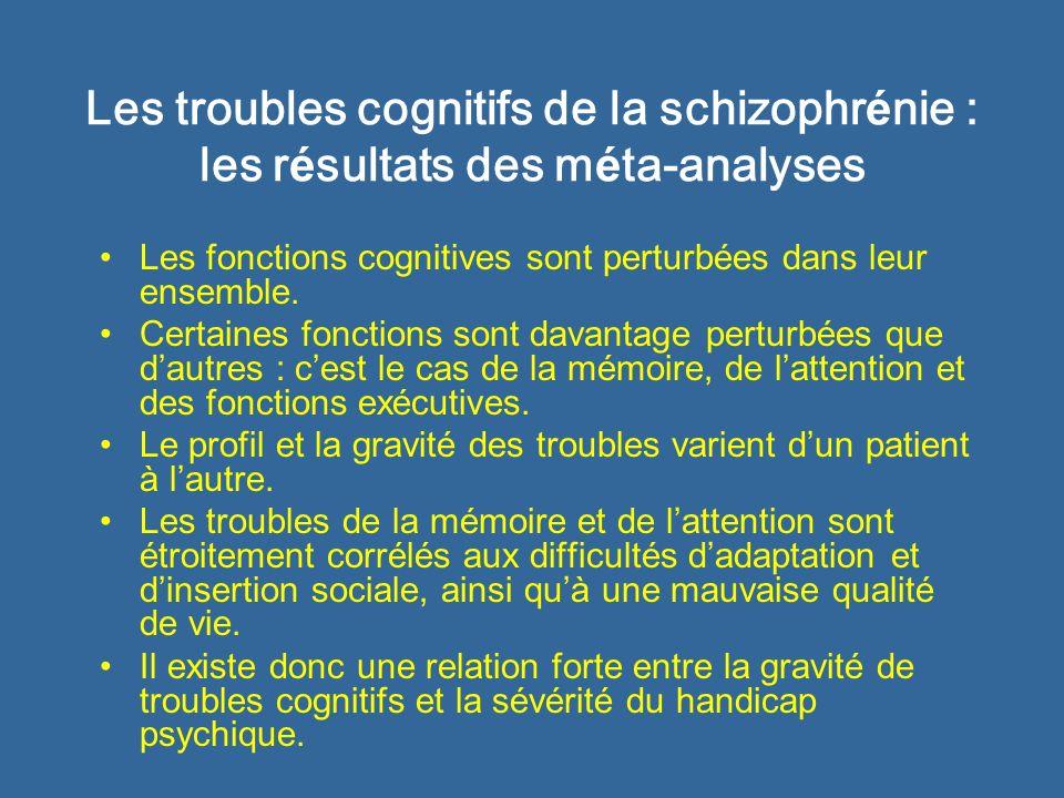 Les troubles cognitifs de la schizophrénie : les résultats des méta-analyses