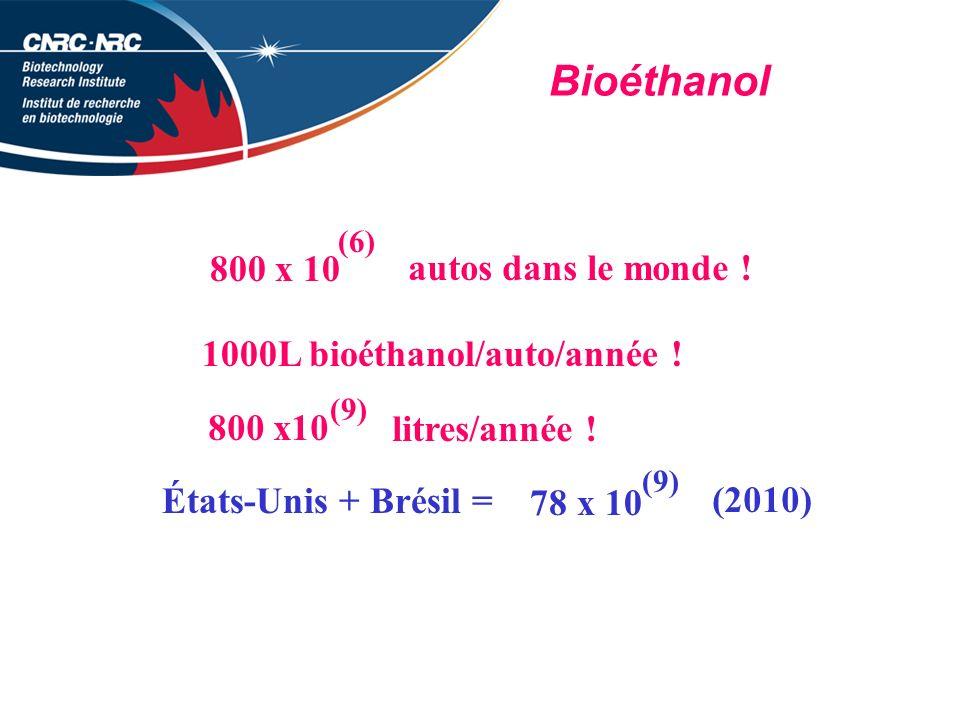 Bioéthanol 800 x 10 autos dans le monde !