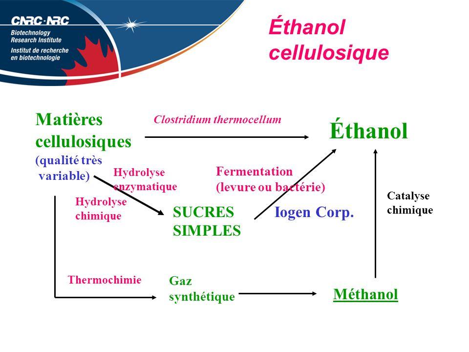 Éthanol Éthanol cellulosique Matières cellulosiques SUCRES SIMPLES