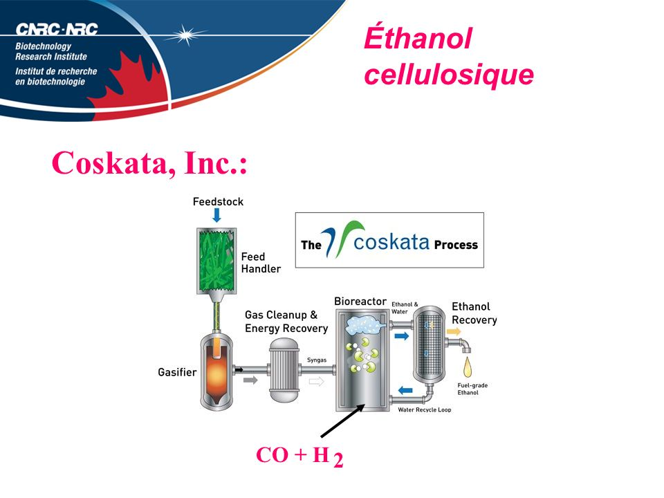 Éthanol cellulosique Coskata, Inc.: CO + H 2