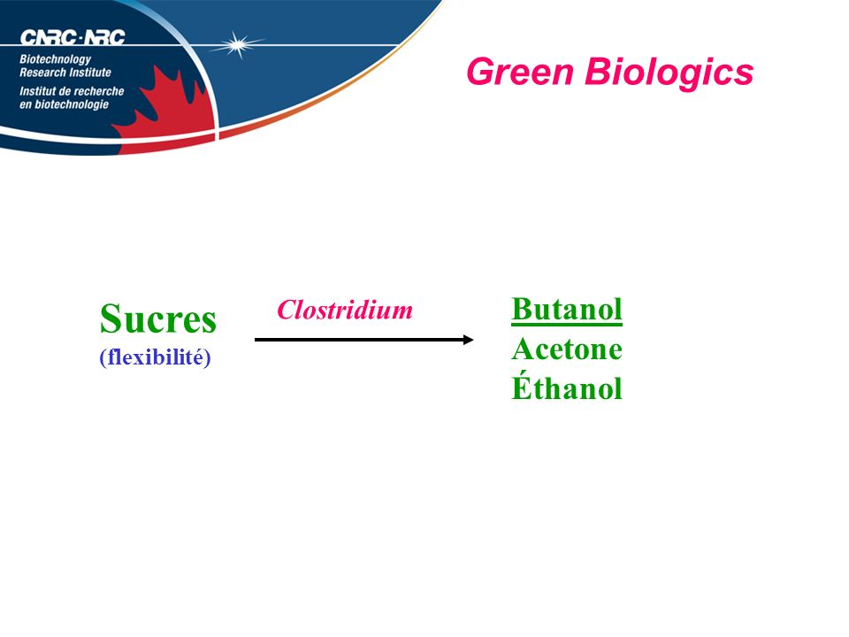 Sucres Green Biologics Butanol Acetone Éthanol Clostridium