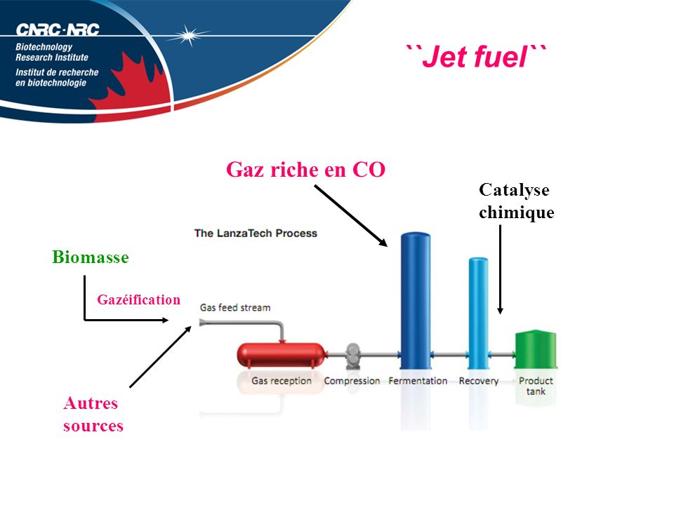 ``Jet fuel`` Gaz riche en CO Catalyse chimique Biomasse Autres sources