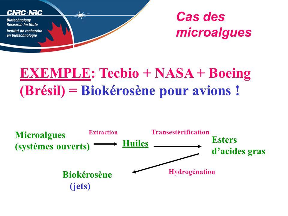 EXEMPLE: Tecbio + NASA + Boeing (Brésil) = Biokérosène pour avions !