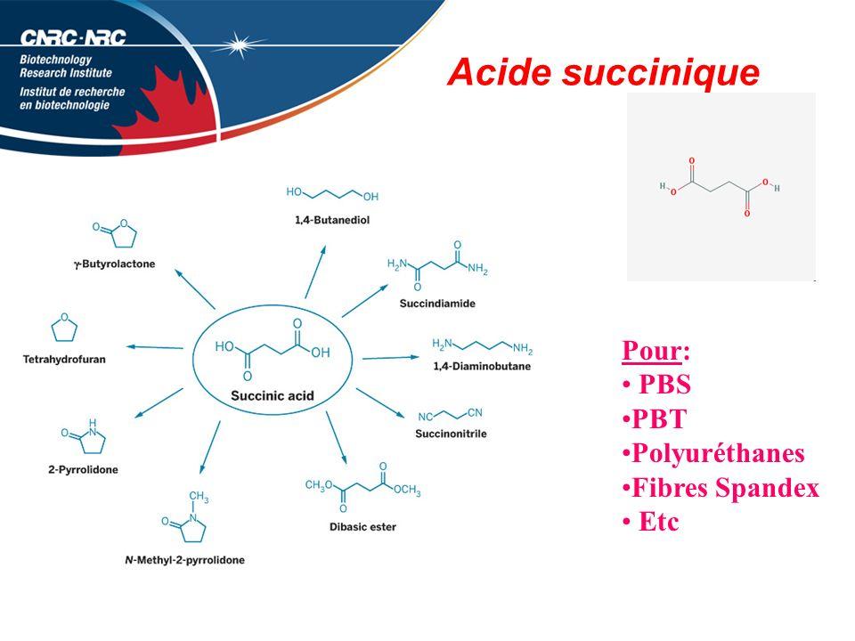 Acide succinique Pour: PBS PBT Polyuréthanes Fibres Spandex Etc