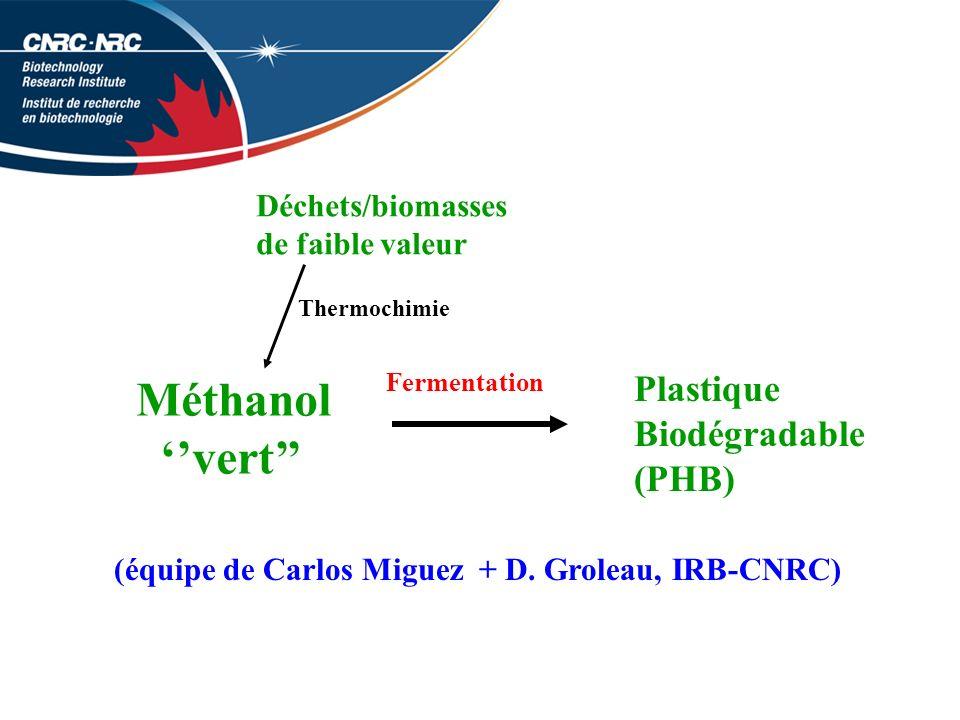 Méthanol ''vert'' Plastique Biodégradable (PHB) Déchets/biomasses