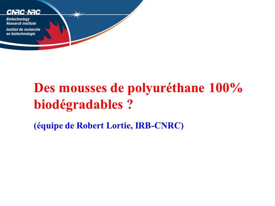 Des mousses de polyuréthane 100% biodégradables