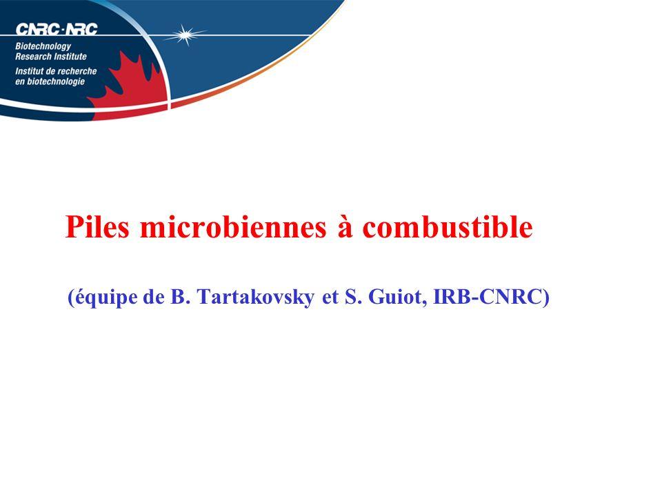 Piles microbiennes à combustible