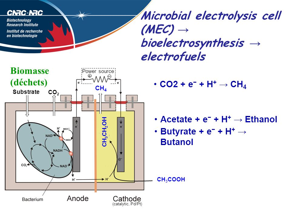 Microbial electrolysis cell (MEC) → bioelectrosynthesis → electrofuels