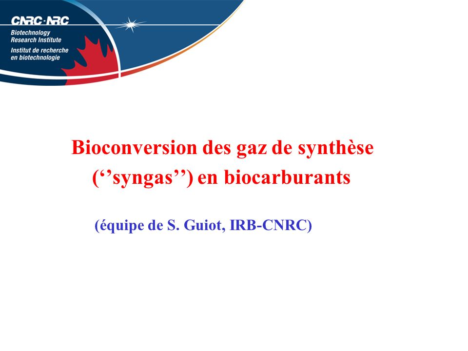 Bioconversion des gaz de synthèse (''syngas'') en biocarburants