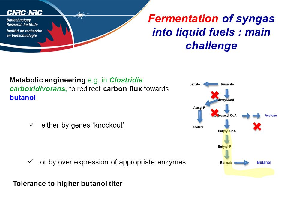 Fermentation of syngas into liquid fuels : main challenge