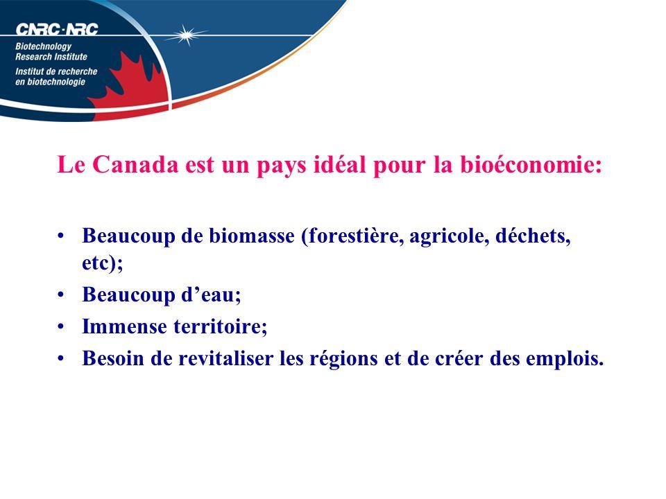 Le Canada est un pays idéal pour la bioéconomie: