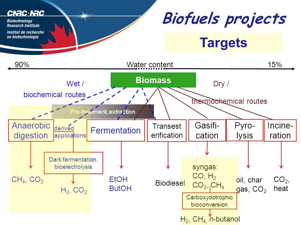 Biofuels projects Targets Biomass Pyro-lysis Gasifi-cation