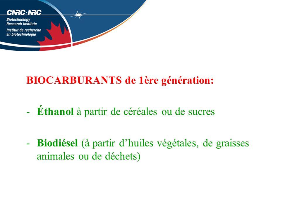 BIOCARBURANTS de 1ère génération: