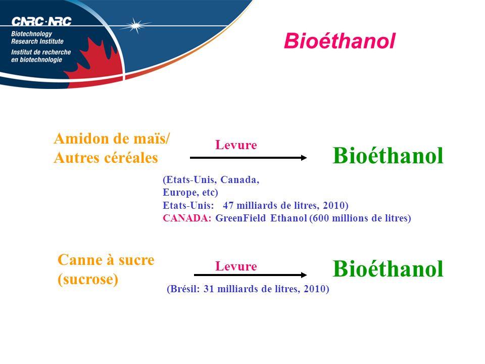 Bioéthanol Bioéthanol Bioéthanol Amidon de maïs/ Autres céréales