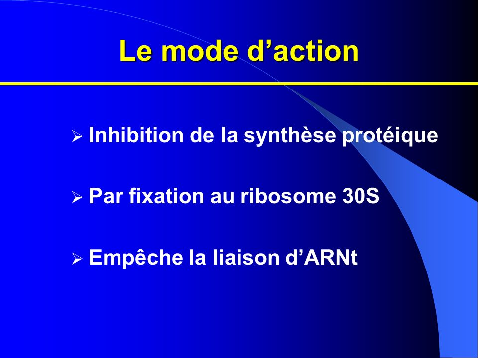 Le mode d'action Inhibition de la synthèse protéique