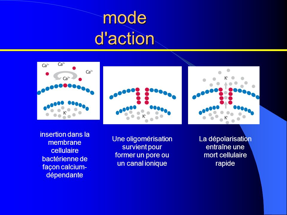 mode d action insertion dans la