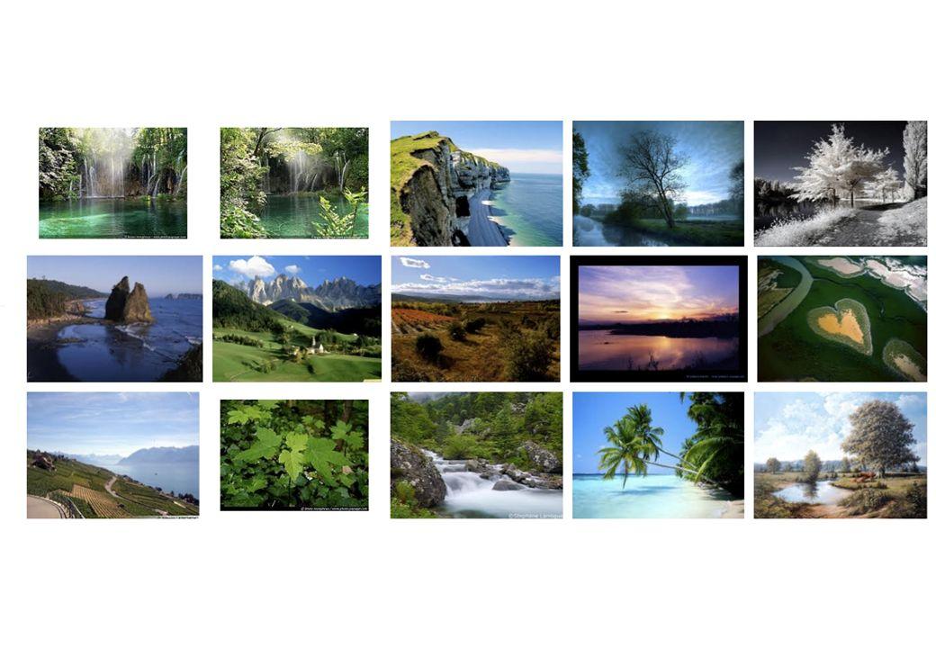Premières images obtenues sur Google-images avec le mot-clé paysage , ce 17 décembre 2011.