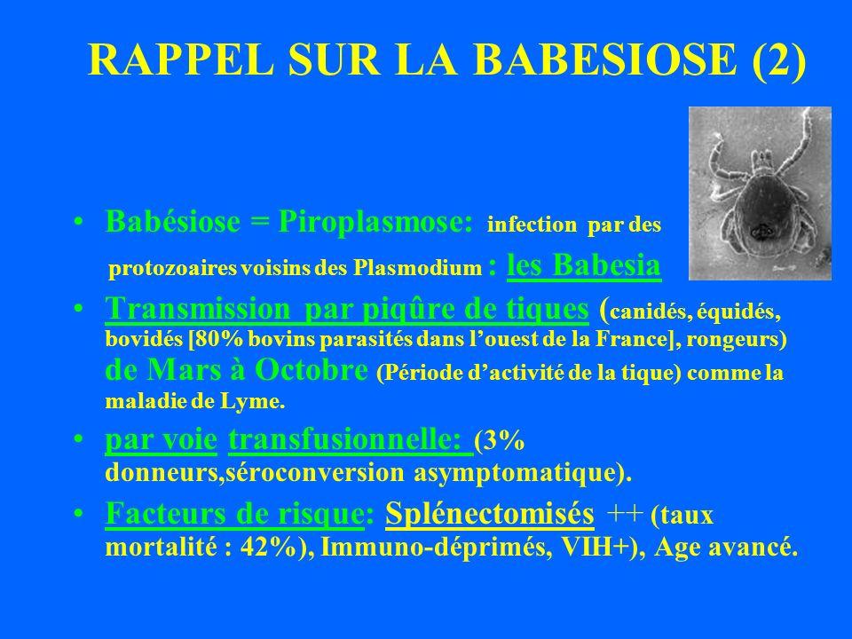 RAPPEL SUR LA BABESIOSE (2)