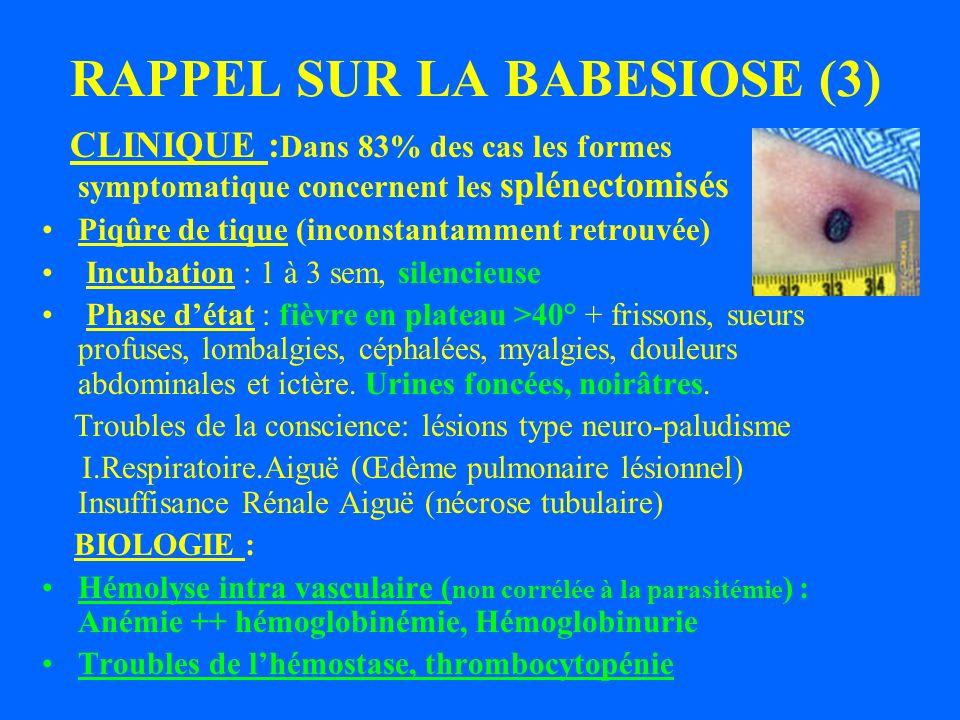 RAPPEL SUR LA BABESIOSE (3)