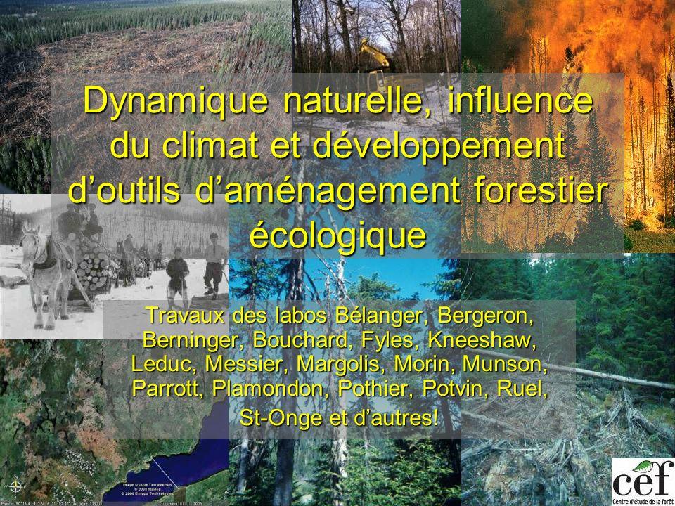 Dynamique naturelle, influence du climat et développement d'outils d'aménagement forestier écologique