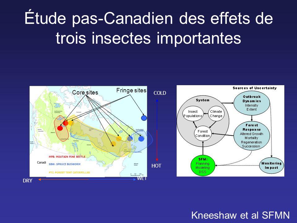Étude pas-Canadien des effets de trois insectes importantes